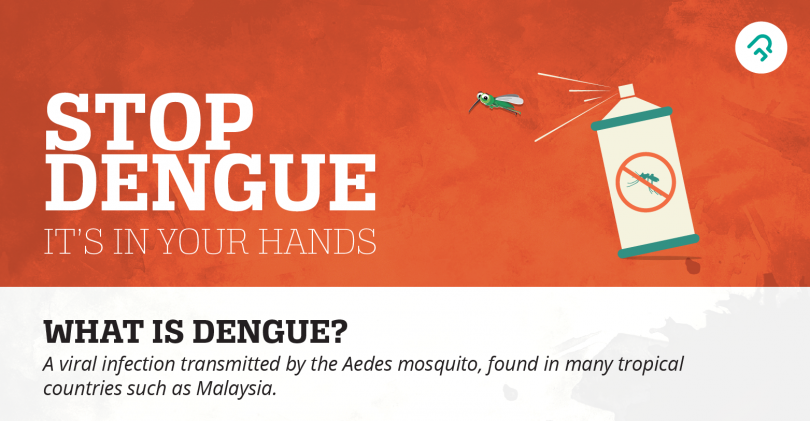 ways to avoid dengue