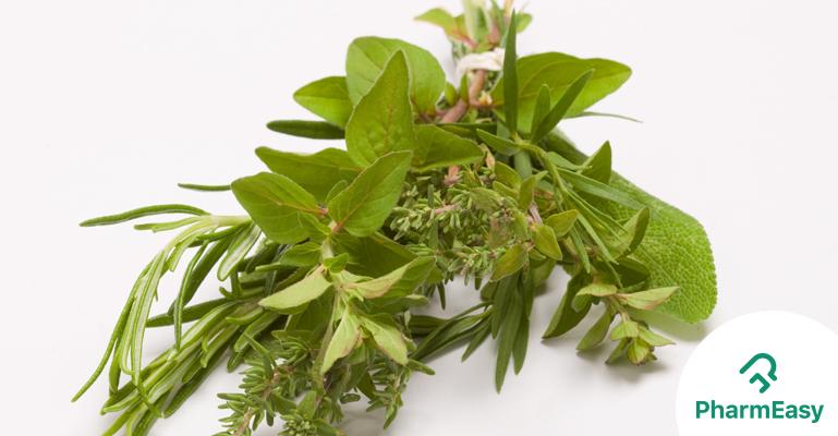 Herbs to lower Blood Sugar