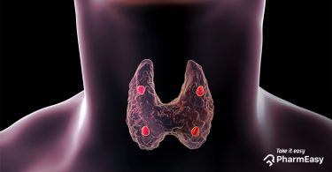 The connection between stress & thyroid